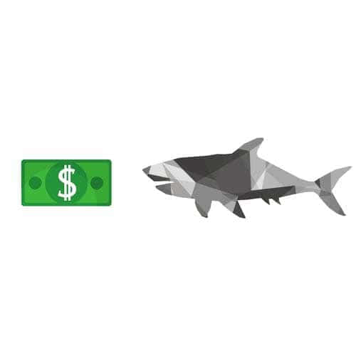Shark hunting money